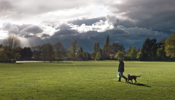 A panoramic photo of a scene in the park. The sky was cloudy with rays of sun light peeking through. In the foreground, David and Brusky can be seen at a distance.